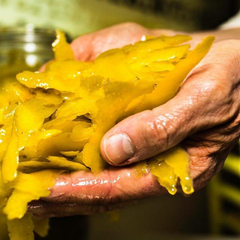 Roberto Peveroni Lemon