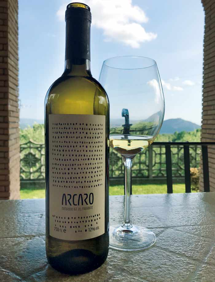 Vino-biologico arcaro